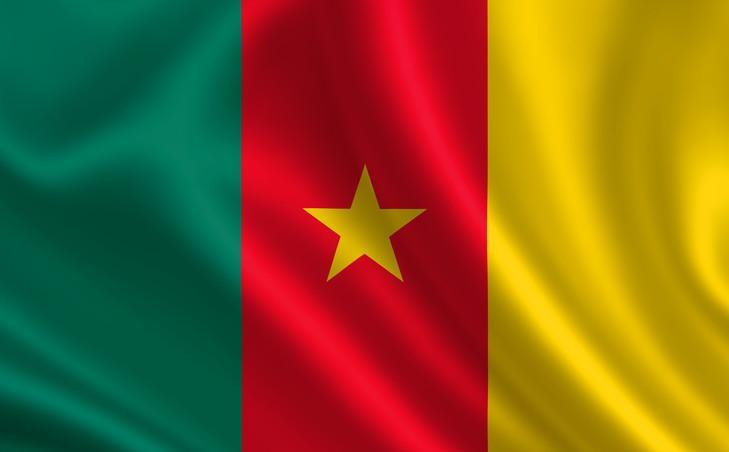 mercredi-2-octobre-presse-reseaux-sociaux-cameroun-rapportaient-larrestation-musclee-religieux-lazariste-jean-baptiste-noah-balla_0_729_452.jpg